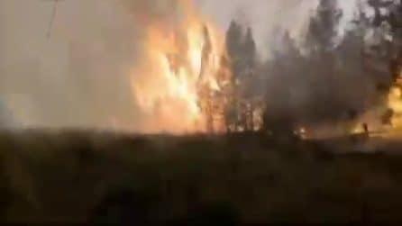Brucia la Siberia, la regione più fredda della Russia: inviati aerei militari per spegnere incendi