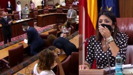 Seduta in Parlamento interrotta, i presenti spaventati da un topo