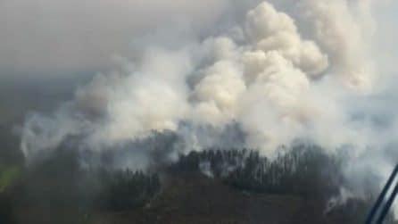 Incendi in Siberia, danneggiati 1,5 milioni di ettari di taiga