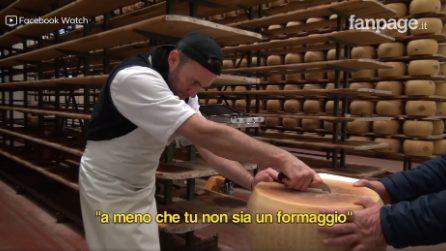 Il racconto dei mestieri: Il casaro. La storia di un caseificio italiano.