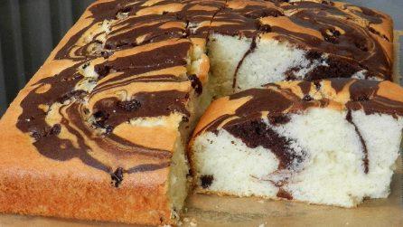 Torta soffice variegata al cacao: il dessert goloso da provare