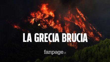Incendi in Grecia, le fiamme assediano Atene: case senza acqua e senza elettricità