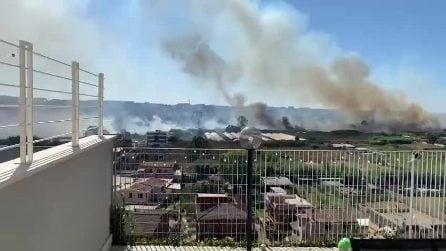 Vasto incendio alla pineta di Castel Fusano: chiusa via Ostiense e e fiamme che minacciano le case