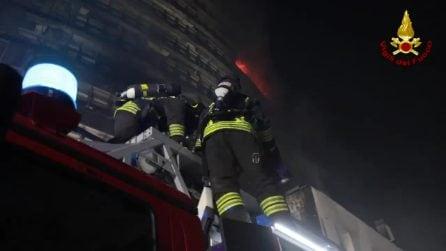 Incendio Milano, i vigili del fuoco salvano un gattino intrappolato nell'edificio
