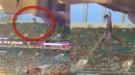 Gatto penzola dalla cima dello stadio, una scena surreale allo stadio