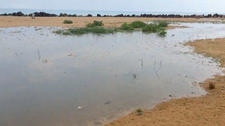 Il mare diventa nero: le immagini del disastro a San Leone
