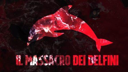 1500 delfini uccisi a coltellate alle Faroe: è stato il peggior massacro della storia