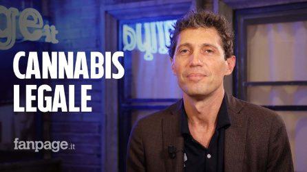 """Cannabis, Magi: """"Obiettivo è legalizzazione, grande tema sociale che non riguarda solo consumatori"""""""