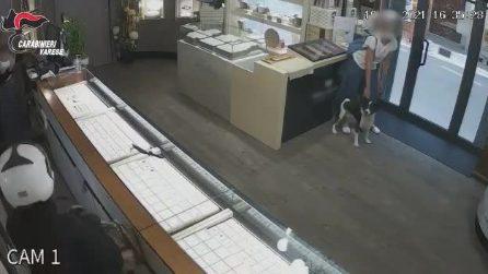 Rapina in una gioielleria, clienti e proprietari legati con delle fascette: due arresti