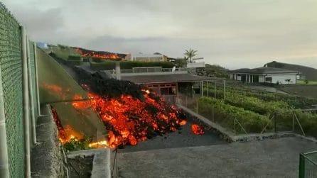 Eruzione alle Canarie, la lava avanza e cancella le abitazioni