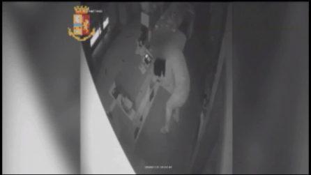 Torino, ladro rapina una macelleria con la felpa de La Casa di Carta