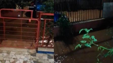 Maltempo, la pioggia allaga Palermo: acqua anche dentro le case