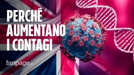 Rischio 100mila casi al giorno: perché aumentano i contagi nel Regno Unito