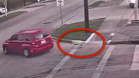 Donna rapinata in strada e trascinata, insieme al cane al guinzaglio, per decine di metri